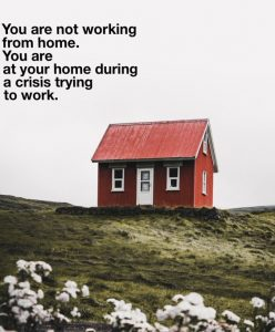 A small red house with two white windows either side of a white door, is on a hill. White flowers are in the foreground. Above it says 'you are not working from home. You are at your home during a crisis trying to work.